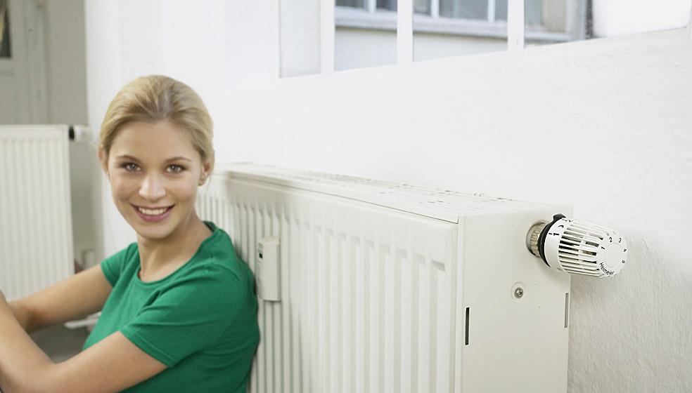 heizung erneuern und f rderung sichern gute bekannte apolda. Black Bedroom Furniture Sets. Home Design Ideas