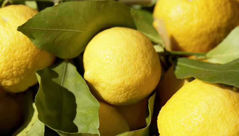 Zitrone statt Chemie