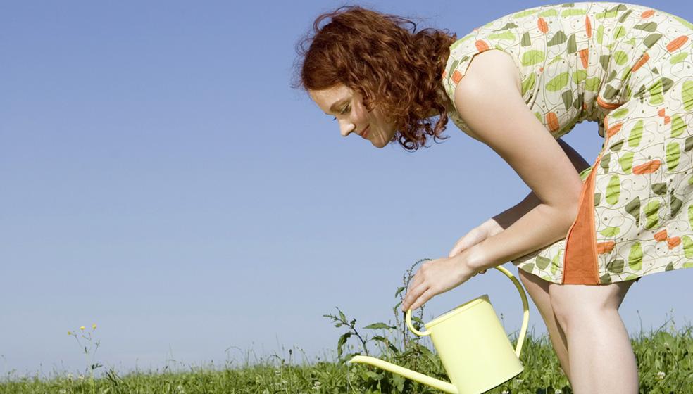 Gießkanne und Gartenschlauch